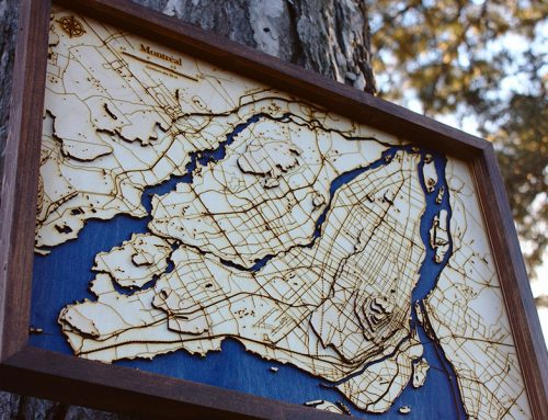Wooden Earth Maps